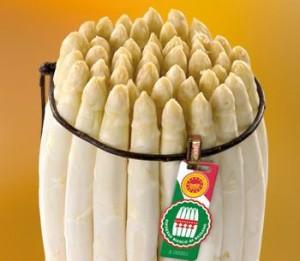 asparago bianco di bassano DOP